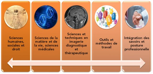 DTS-imagerie-medicale